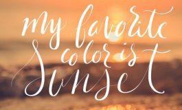 Who is sunsetcoast.life